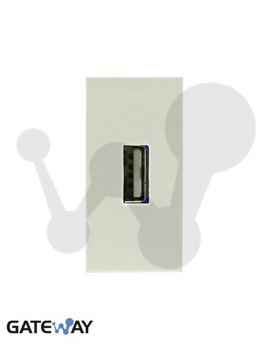 Modulo de 45x22,5 con conector USB Hembra Tipo A, conexión tornillos, blanco