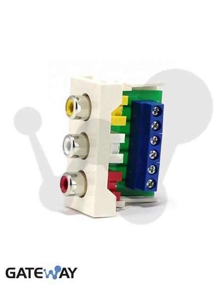 Modulo de 45x22,5 con conector 3 RCA (Video&Audio), conexión tornillos, blanco