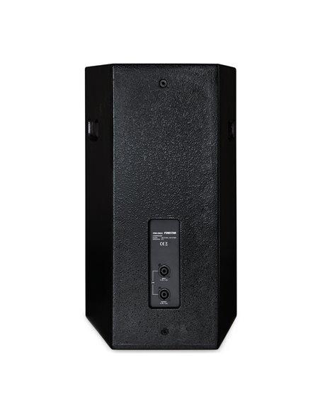 Altavoz alta potencia 250 W RMS, 500 W máximo