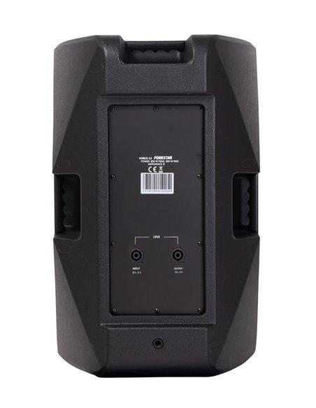 Altavoz alta potencia 300 W RMS, 800 W máximo