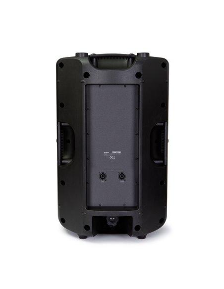 Altavoz alta potencia con caja de inyección 150 W RMS, 300 W máximo